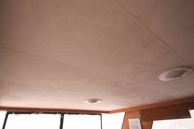 New Headliner in Upper Salon   click image to enlarge
