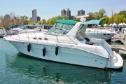 40  Sea Ray   click image to view Product Info